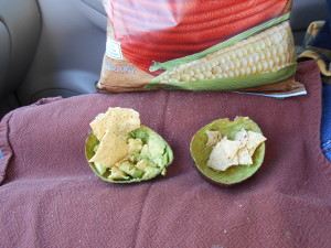 Perfect avocado presentation by Andrea